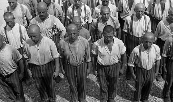 Widok z góry na ogolonych więźniów w pasiastych spodniach, stojących na baczność. Zdjęcie propagandowe SS (Archiwum Narodowe)