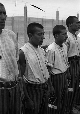 Four prisoners in striped pants stand at attention, SS propaganda photo (Federal archives)