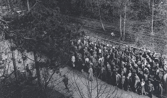Exhausted prisoners in a large column march along a street (Municipal archives Landsberg am Lech)