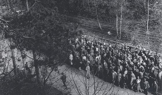 Kolumna wyczerpanych więźniów idzie ulicą miasta (Archiwum Miejskie Landsberg am Lech)