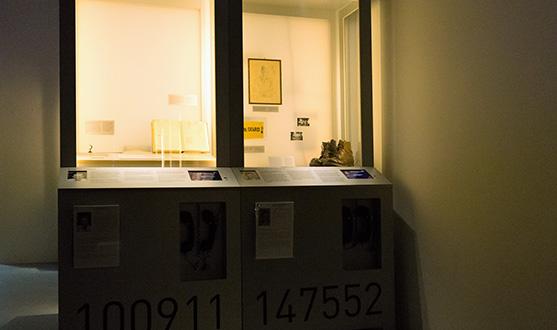 Blick auf vier beleuchtete Ausstellungsvitrinen und das große digitale Schaubild im Sonderausstellungsraum