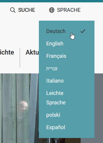 Screenshot Kopfzeile. Aufgeklappte Sprachauswahl.
